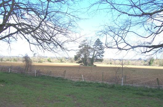 wiltshire-fields1