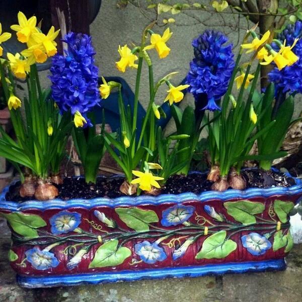 Charlotte's Spring Pot