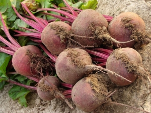 beetroot is a superfood
